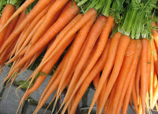zanahoria para bajar de peso
