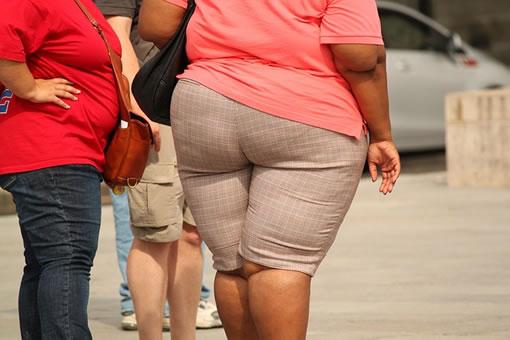 Las 4 principales causas de la obesidad