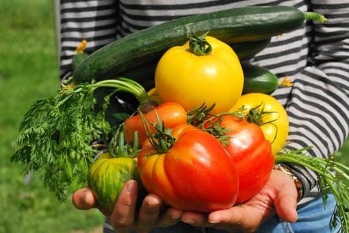 vegetales perder peso