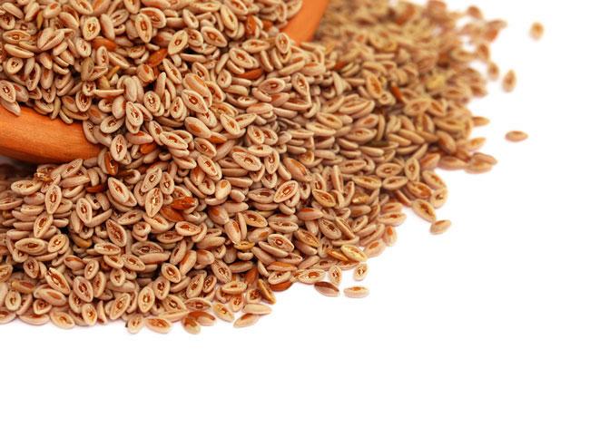 Para disminuir el colesterol la corteza de plantago ovata es de gran ayuda