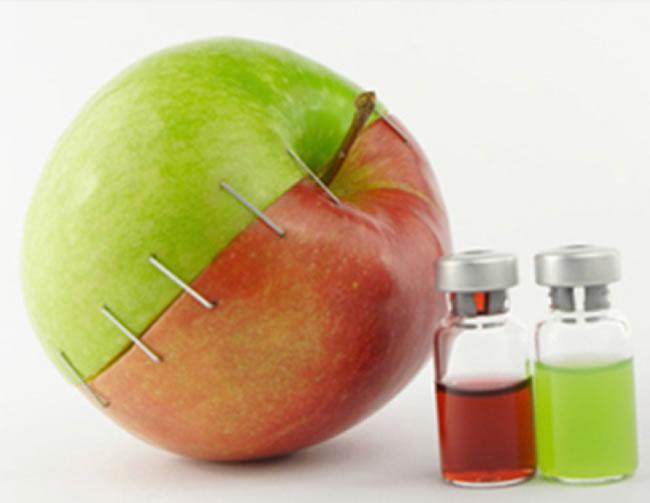 Son más seguros los alimentos transgénicos
