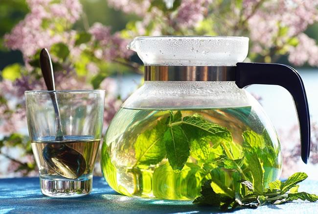 Una jarra de té es buena para reducir el apetito de forma natural